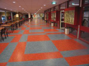 linoleum patroon 2 300x225 - Linoleum patroon van 500m2 in Papendrecht